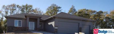 Single Family Home For Sale: 8166 S 185 Street