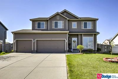 Papillion Single Family Home For Sale: 1003 Valleyview Drive