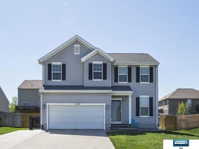 Papillion Single Family Home For Sale: 8718 S 66 Avenue