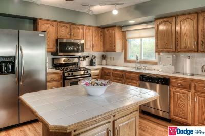 Omaha Single Family Home For Sale: 4664 S 148th Street