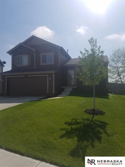 Omaha Single Family Home For Sale: 9227 Summit Street
