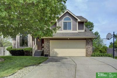 Omaha Single Family Home For Sale: 14004 Olive Circle
