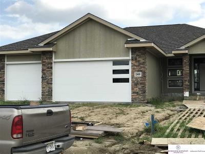 Omaha Single Family Home For Sale: 12409 Mormon Street