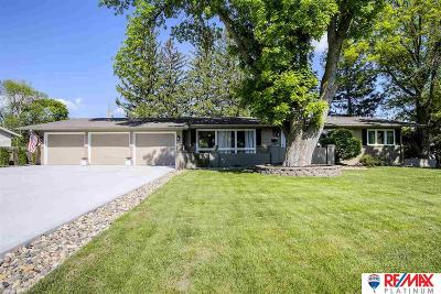 Omaha Single Family Home New: 419 Skyline Drive