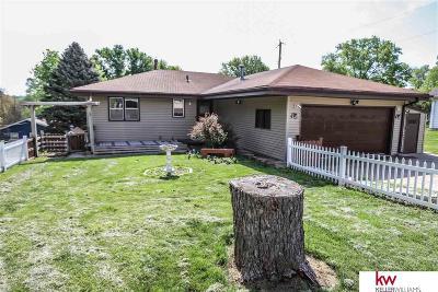 Omaha Single Family Home New: 3113 N 76th Street
