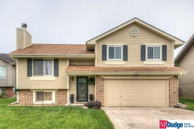 Omaha Single Family Home New: 8422 Girard Street