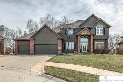Omaha NE Single Family Home New: $423,900