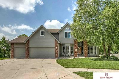Omaha Single Family Home For Sale: 15356 Hillside Circle