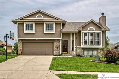 Papillion Single Family Home For Sale: 2407 Marilyn Drive
