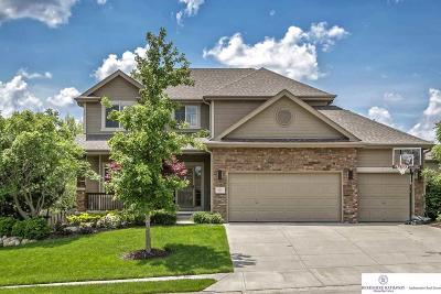 Omaha Single Family Home For Sale: 19611 Andresen Street