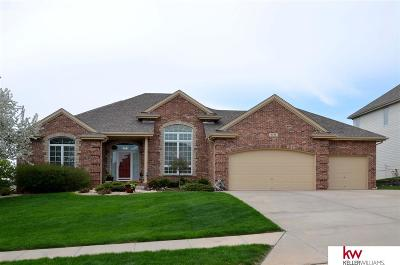 Omaha NE Single Family Home New: $429,000
