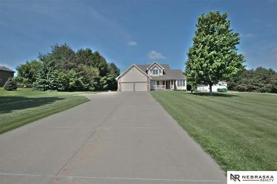 Omaha NE Single Family Home New: $365,000