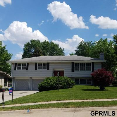 Omaha NE Single Family Home New: $215,900