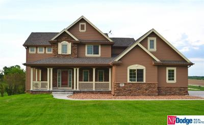 Cass County Single Family Home New: 10491 Prairie Ridge Drive