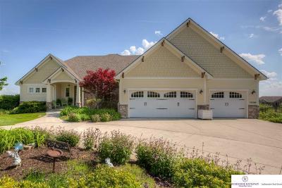 Omaha Single Family Home New: 12389 Potter Circle