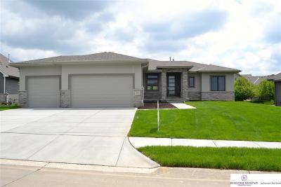 Omaha Single Family Home New: 13115 Craig Street
