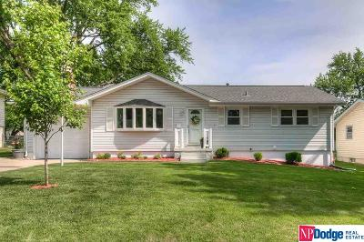 Omaha Single Family Home New: 12212 Orchard Avenue