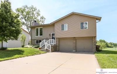 Omaha NE Single Family Home New: $159,900
