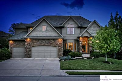 Omaha NE Single Family Home New: $559,900
