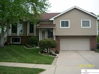 Omaha NE Single Family Home New: $218,000