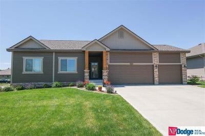 Bellevue NE Single Family Home New: $280,000