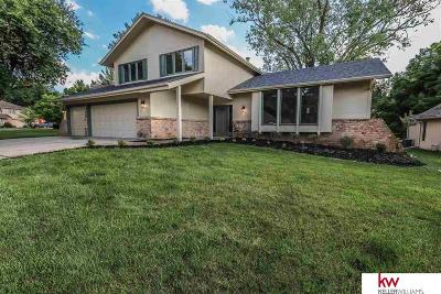 Bellevue Single Family Home For Sale: 514 Martin Drive