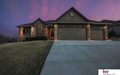 Ashland Single Family Home For Sale: 1065 Granite Way