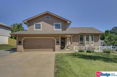 Bellevue Single Family Home For Sale: 3404 Faye Drive