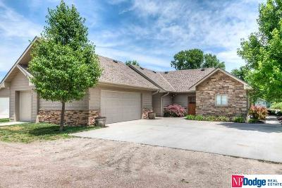 Fremont Single Family Home For Sale: 980 County Road W S-1079