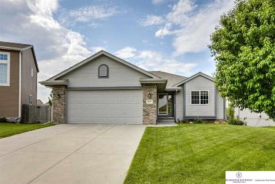Papillion Single Family Home For Sale: 4505 Clearwater Drive