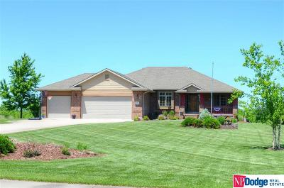 Single Family Home For Sale: 1180 Timberwood Drive