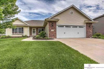 Gretna Single Family Home For Sale: 7111 S 193 Street