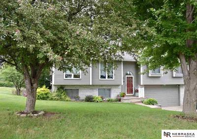 Plattsmouth Single Family Home For Sale: 8702 Pawnee Lane