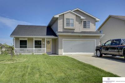 Papillion Single Family Home For Sale: 713 Rosewood Avenue