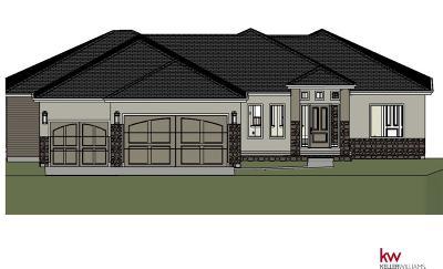 Omaha Single Family Home For Sale: 17249 Colony Drive
