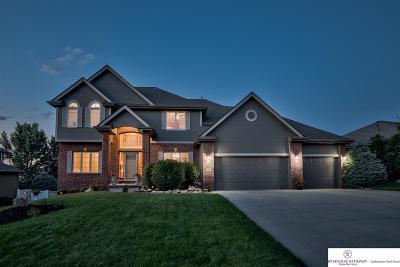 Omaha Single Family Home For Sale: 18356 Nina Street