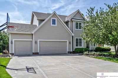 Omaha Single Family Home For Sale: 17411 Hickory Circle