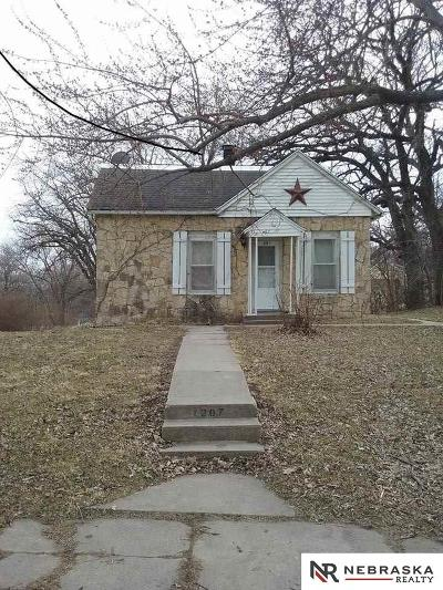 Plattsmouth Single Family Home For Sale: 1207 Avenue A