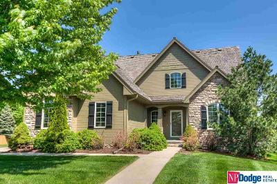 Omaha Single Family Home New: 17026 Cinnamon Circle