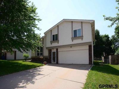 Omaha Single Family Home New: 12827 Olive Street