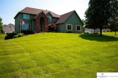 Omaha Single Family Home New: 16121 Sage Street