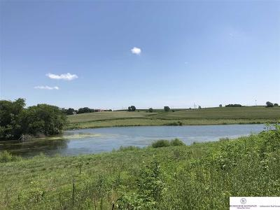 Elkhorn Residential Lots & Land For Sale: 1919 S 208 Street
