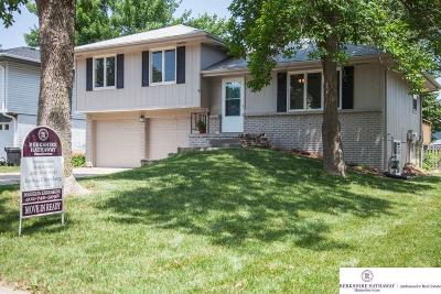 Omaha Single Family Home For Sale: 15706 Orchard Avenue