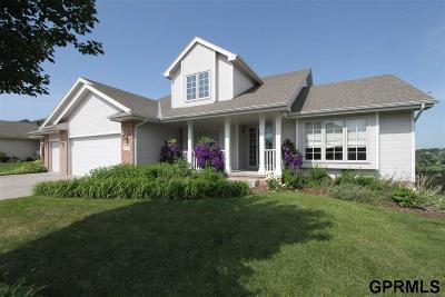 Bellevue NE Single Family Home New: $345,000