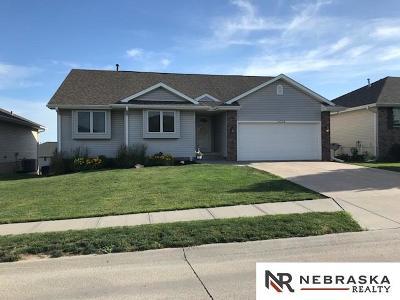 Omaha Single Family Home New: 16224 Heather Street