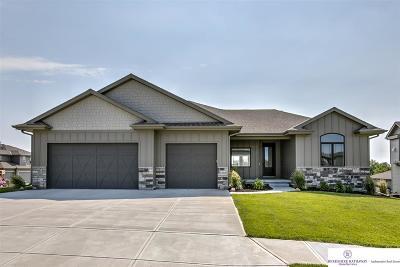 Omaha Single Family Home For Sale: 1601 S 207 Avenue