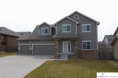 Omaha NE Single Family Home New: $295,000