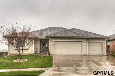 Omaha Rental For Rent: 16913 Palasides Drive