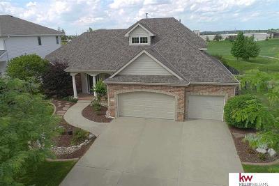 Omaha Single Family Home For Sale: 17018 Harney Street