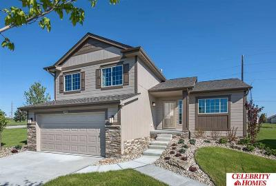 Bellevue Single Family Home New: 1711 Mesa Street